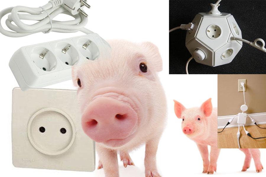 01 Svintus piggy power stiven skyrah designwithlove stivenskyrah1413652403906